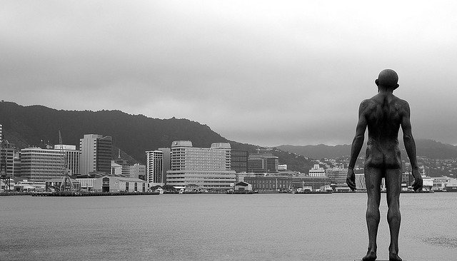 Wellington 2 -blog