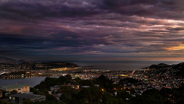 wellington - blog